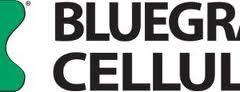 BluegrassCellularAPNSetting